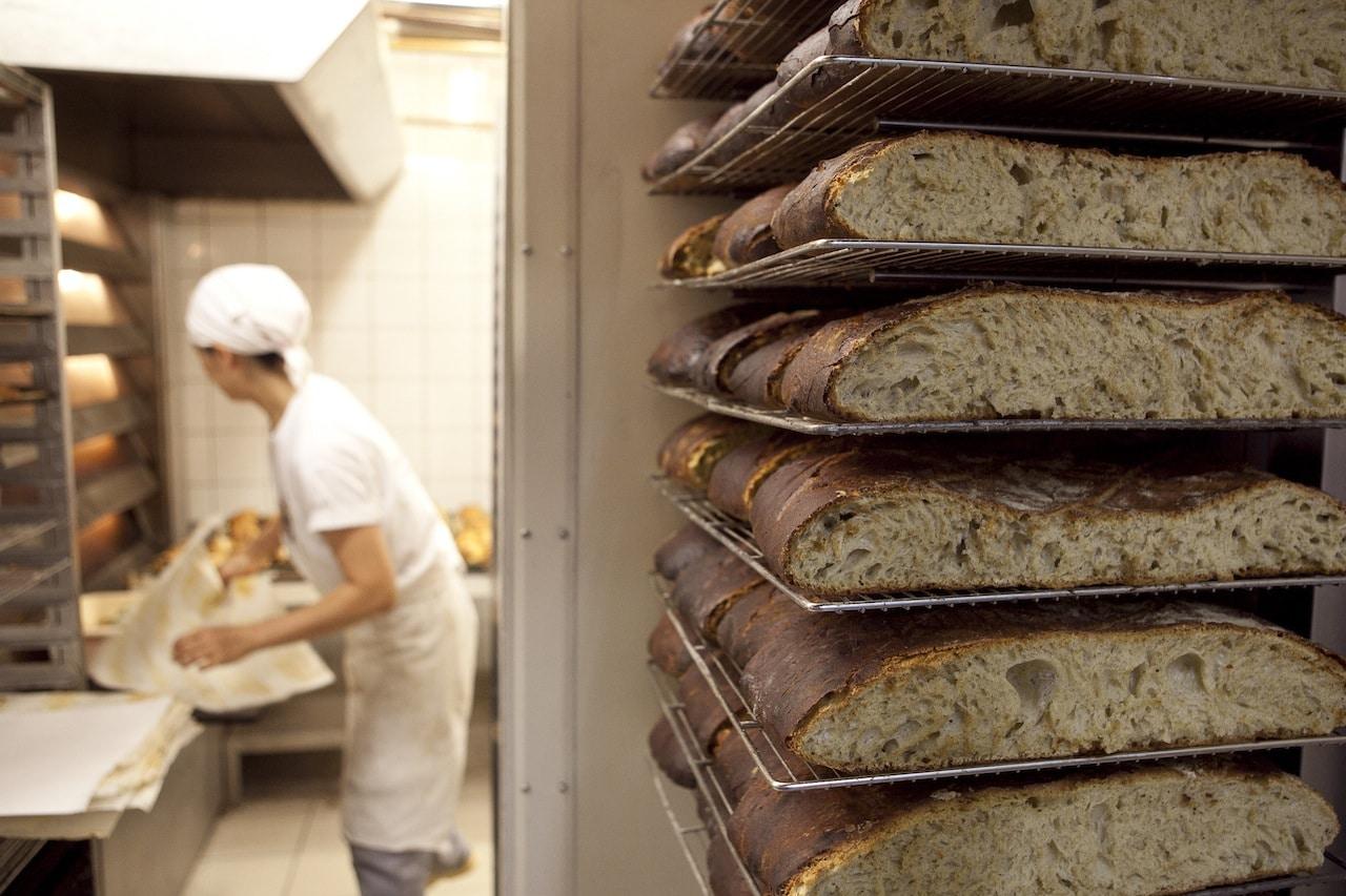 קורס לחם בדנון