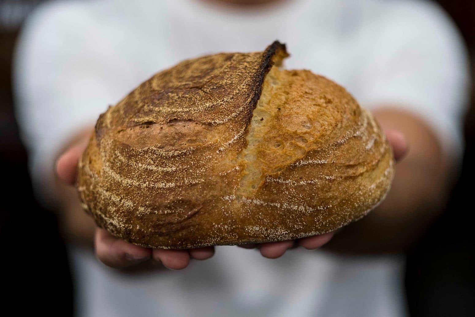 קורס לחם דנון נמל תל אביב